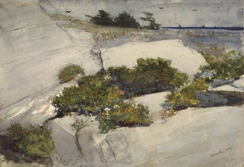 Art Prints of Maine Cliffs by Winslow Homer