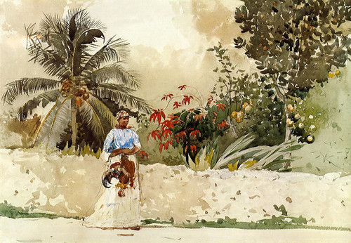 Art Prints of On the Way to Market, Bahamas by Winslow Homer