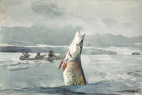Art Prints of Pike Lake, Saint John by Winslow Homer