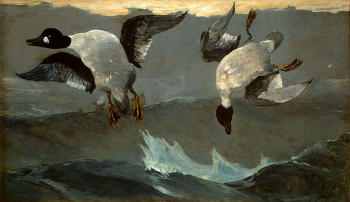 Art Prints of Right and Left by Winslow Homer