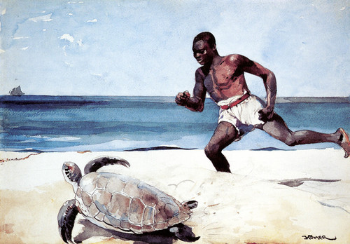 Art Prints of Rum Cay by Winslow Homer