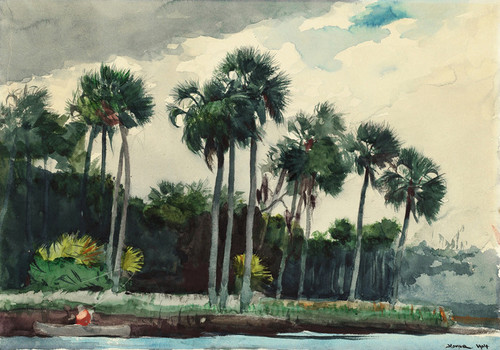 Art Prints of Red Shirt, Homosassa Florida by Winslow Homer