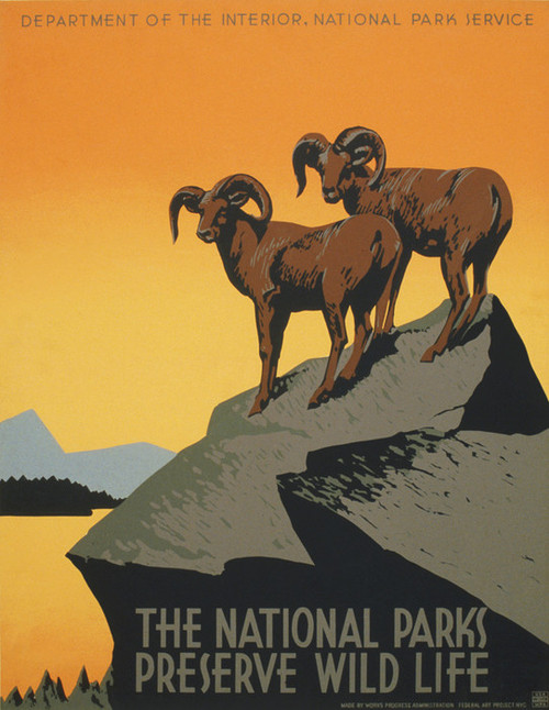 Art Prints of The National Parks, Preserve Wild Life, 1938, WPA Poster