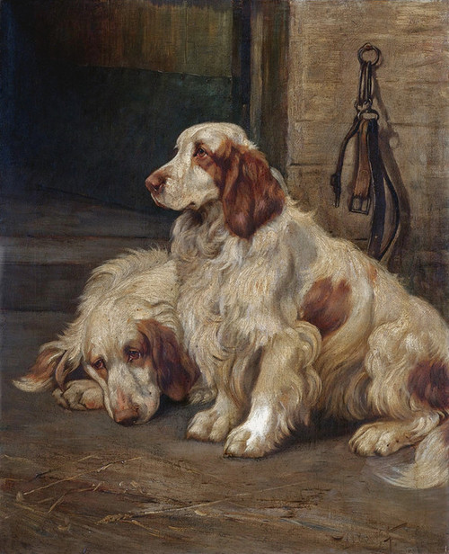 Art Prints of Two Setters by Wright Barker