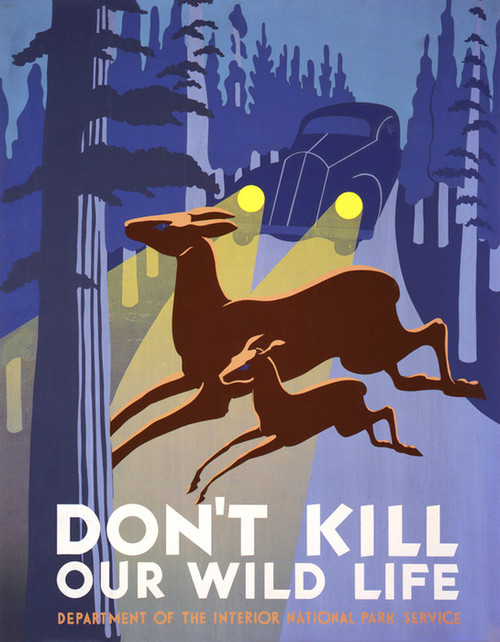 Art Prints of Don't Kill Our Wild Life (399117), Travel Poster