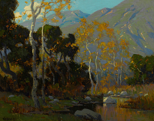 ARt Prints of Canyon Stream by Elmer Wachtel