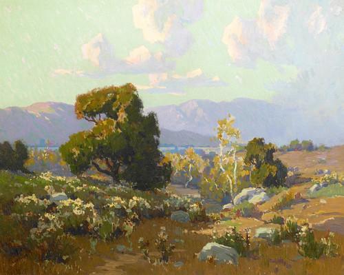 Art Prints of Wild Buckwheat by Elmer Wachtel