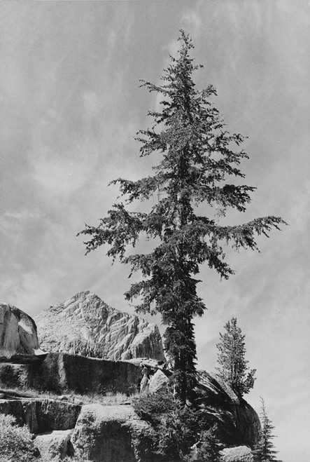 Art prints of An Unnamed peak, Kings River Canyon by Ansel Adams