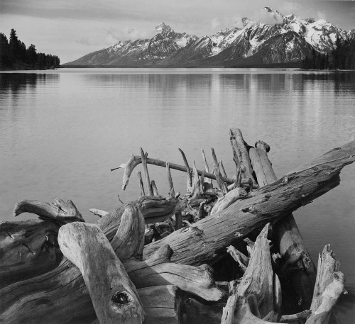 Art prints of Jackson Lake, Grand Teton National Park, Wyoming by Ansel Adams