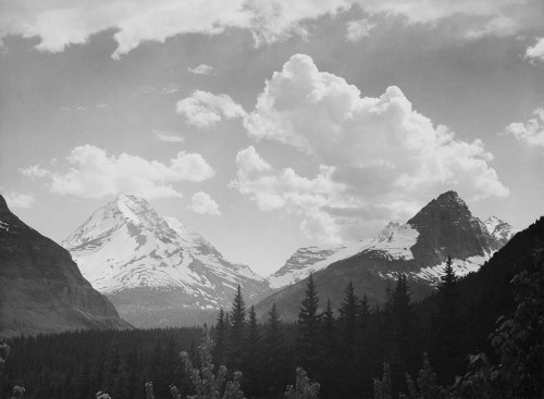 Art prints of Looking across forest to mountains and clouds, Glacier National Park, Montana