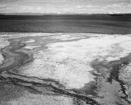 Art prints of Yellowstone Lake, Hot Springs Overflow, Yellowstone National Park, Wyoming by Ansel Adams