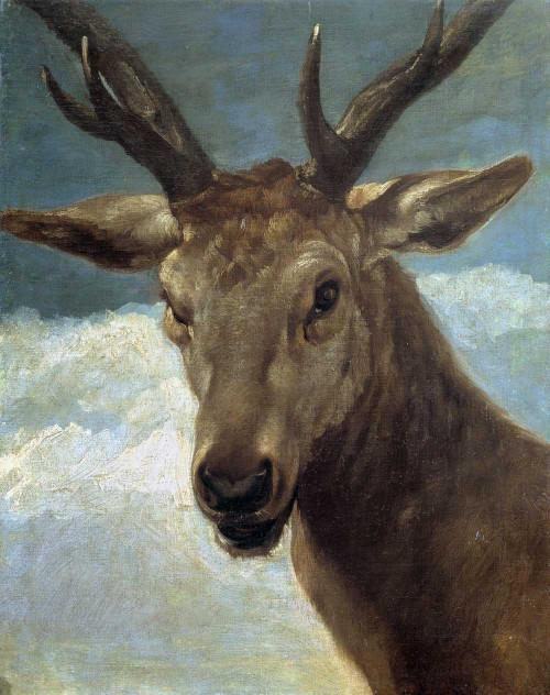 Art prints of Deer Head by Diego Velazquez