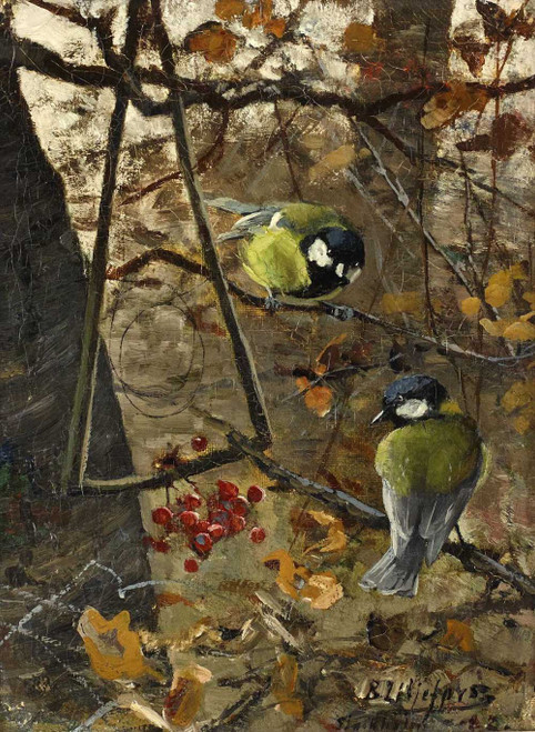 Art prints of Great Titmouse by Bruno Liljefors