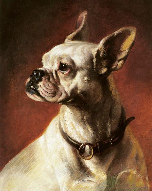 Art prints of French Bulldog by Carl Reichert