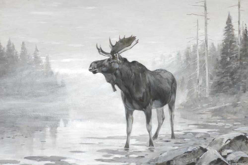 Art prints of Misty Moose by Carl Rungius