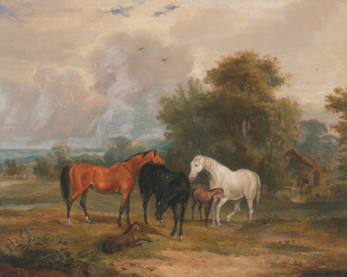 Art prints of Horses Grazing, Mares and Foals in a Field by Francis Calcraft Turner