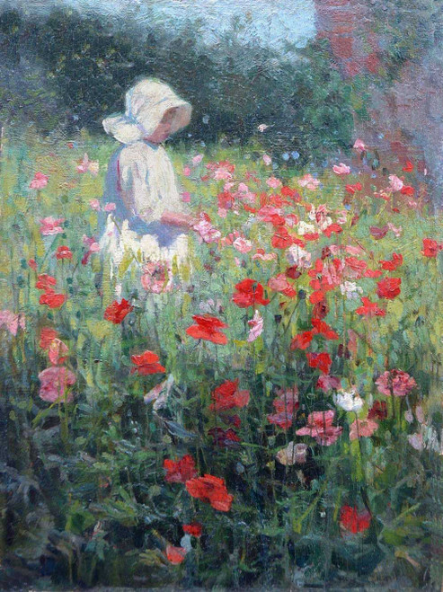Art prints of Shirley, Poppies by Mia Arnesby Brown