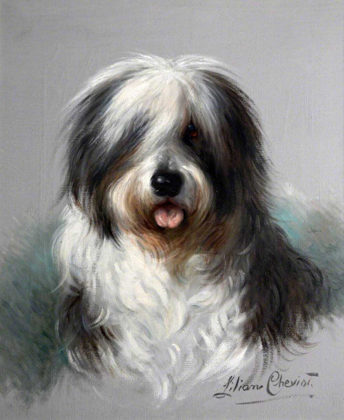 Art prints of Trusty, Old English Sheepdog by Lilian Cheviot