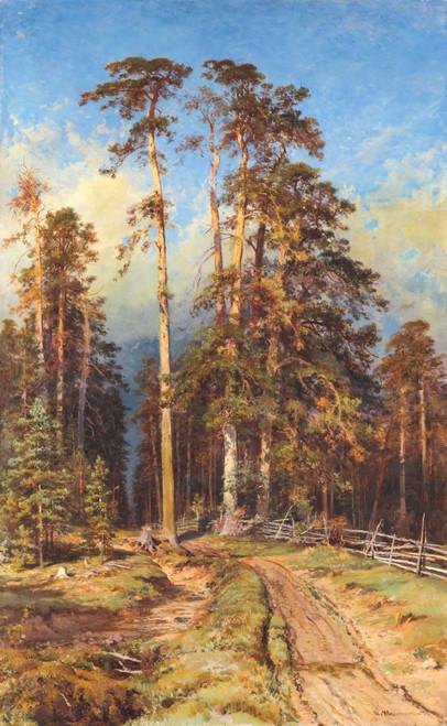 Art prints of Pine Forest II by Ivan Shishkin