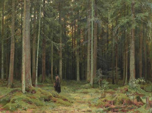 Art prints of The Forest of Countess Mordvinova, 1891 by Ivan Shishkin