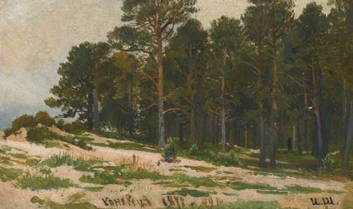 Art prints of Pine Forest I by Ivan Shishkin