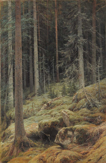 Art prints of Wilds by Ivan Shishkin