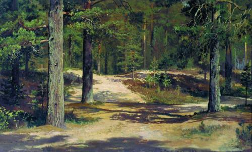 Art prints of Pine Forest by Ivan Shishkin