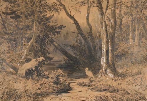 Art prints of Backwoods by Ivan Shishkin