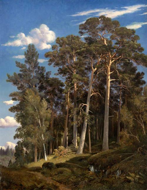 Art prints of Pine Forest III by Ivan Shishkin