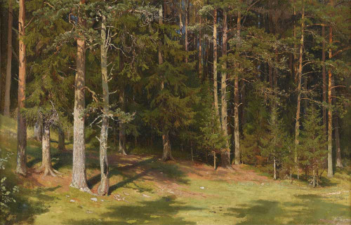 Art prints of The Clearing by Ivan Shishkin
