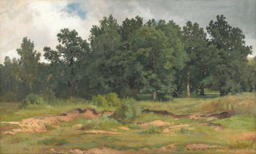 Art prints of Oak Wood in a Gray Day by Ivan Shishkin