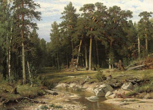 Art prints of Mast Pine Forest in Viatka Province by Ivan Shishkin