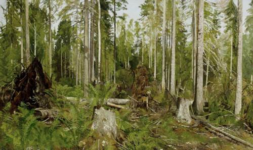 Art prints of Pine Forest (a Study) by Ivan Shishkin