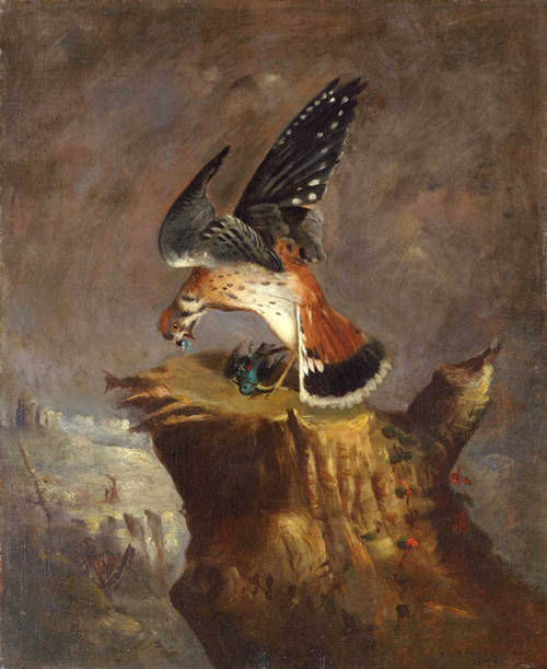 Art prints of  Vulture and Its Prey by Robert S. Duncanson