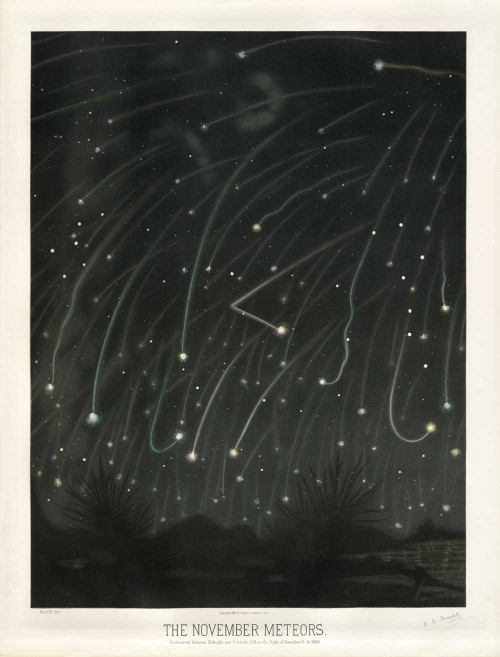 Art prints of The November Meteors, 1868 by Étienne Léopold Trouvelot