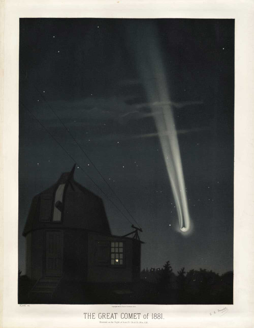 Fine art prints of The Great Comet of 1881 by Étienne Léopold Trouvelot
