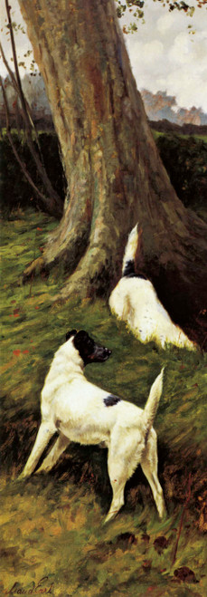Giclee prints of Totteridge Smooth Fox Terriers I by Maud Earl