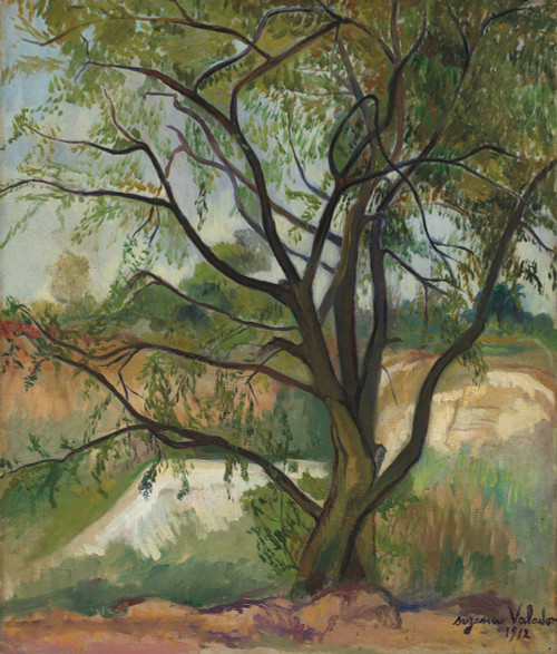 Giclee prints of The Tree by Suzanne Valadon