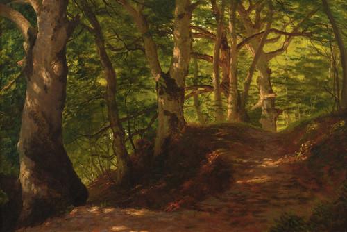 Art Prints of A Path Through the Forest by Albert Bierstadt