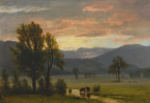Art Prints of Landscape with Cattle by Albert Bierstadt