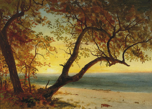 Art Prints of Landscape in the Bahamas by Albert Bierstadt