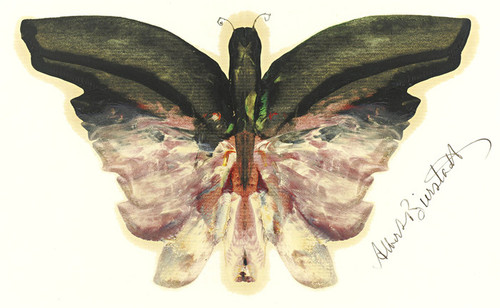 Art Prints of Pink Butterfly by Albert Bierstadt