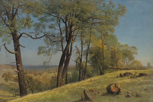 Art Prints of Rockland County California by Albert Bierstadt