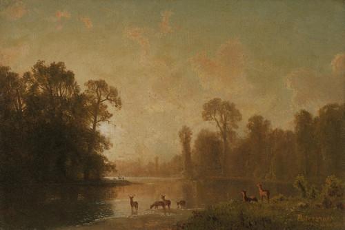 Art Prints of Twilight with Deer by Albert Bierstadt