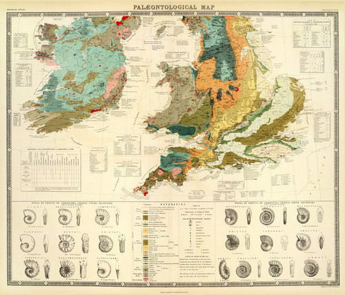 Art Prints of British Islands (0372006) by Alexander Johnson and Edward Forbes