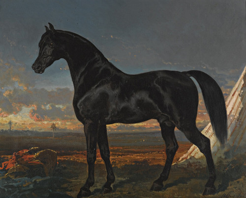 Art Prints of Black Horse Palm by Alfred de Dreux