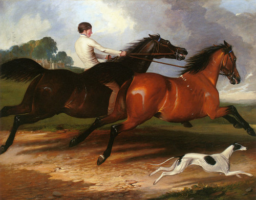 Art Prints of A Young Man Exercising Horses in a Landscape by Alfred de Dreux