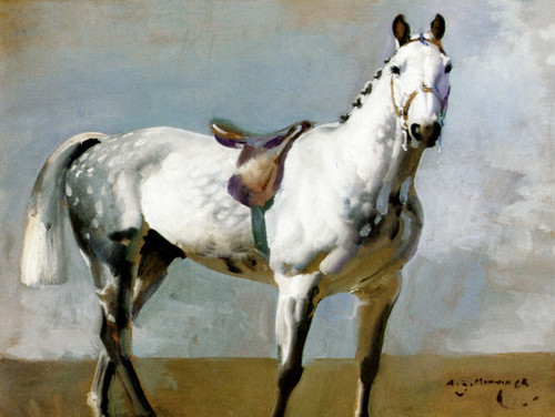 Art Prints of Grey Horse in Profile by Alfred James Munnings