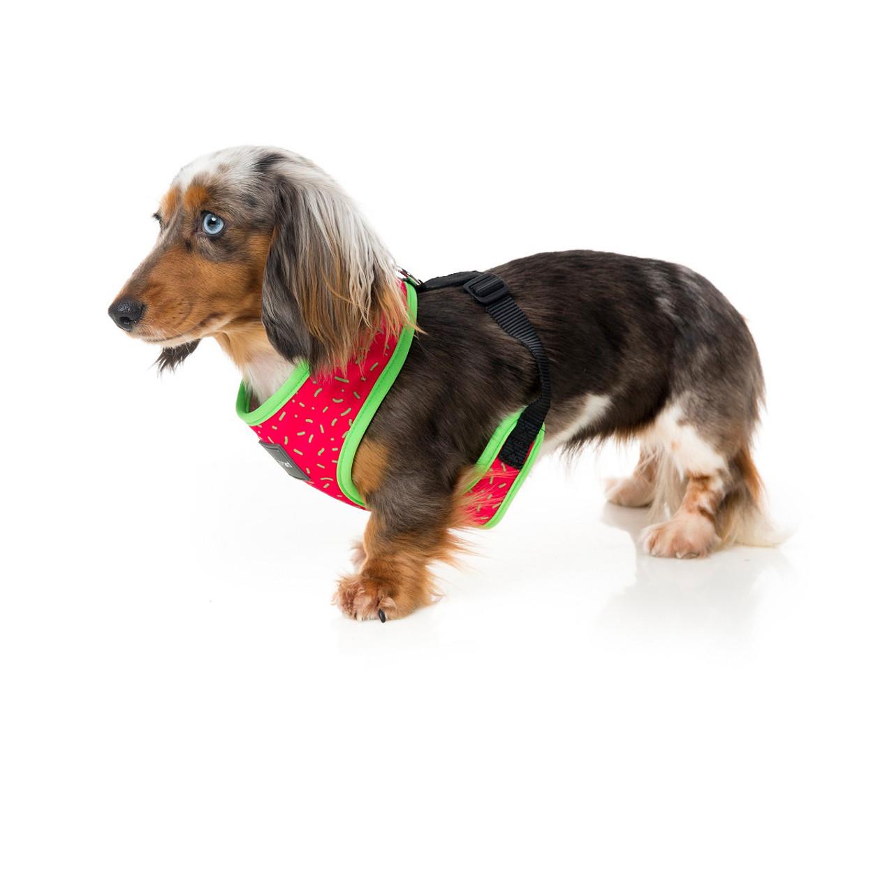 Fuzzyard Juicy Harness Dog