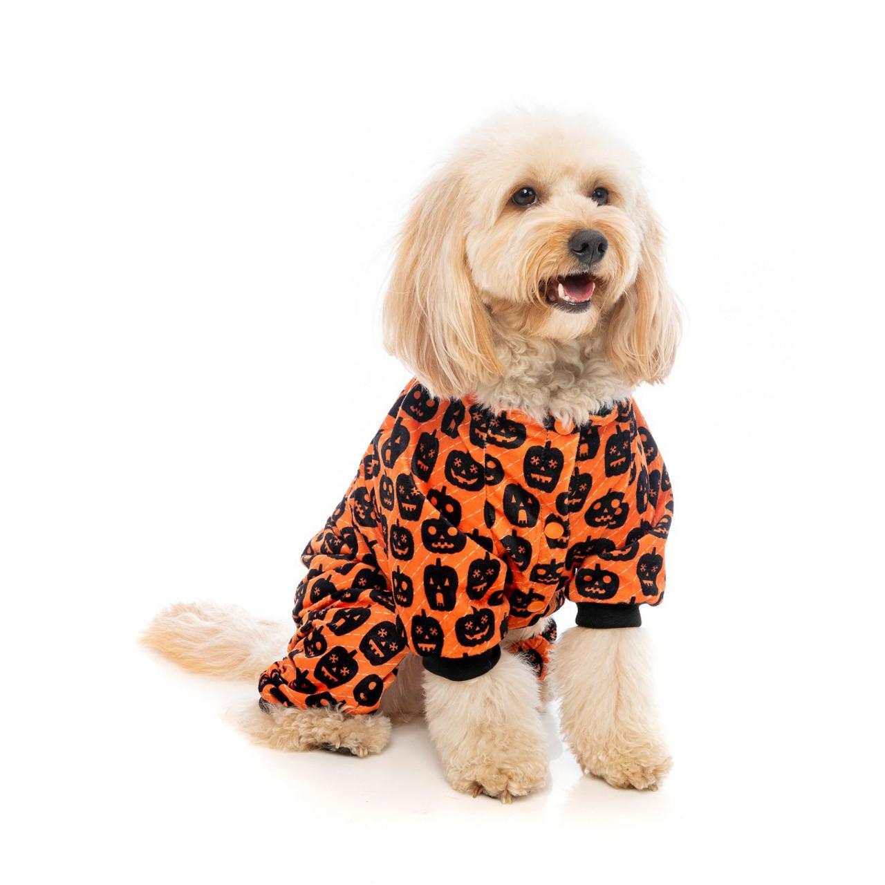 Fuzzyard pumpkin patch orange pumpkin dog puppy apparel pajamas